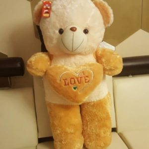 Cute Plush 37 Inches Teddy Bear with Heart Pillow